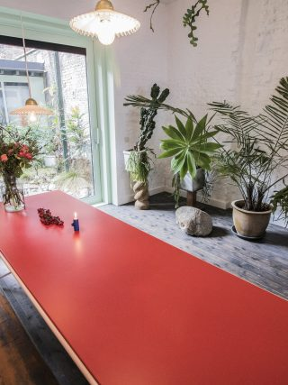 table rouge, plantes